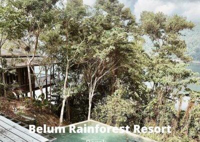 فنادق في غابات ماليزيا (11)