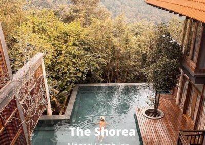 فنادق في غابات ماليزيا (4)