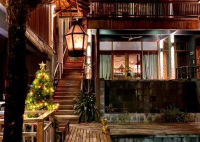 فندق داخل غابة يبعد ساعه عن كوالالمبور (6)
