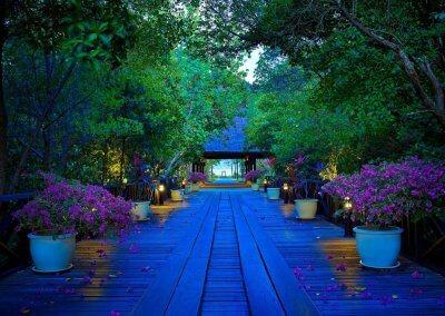 فندق على جزيرة خاصة قرب لنكاوي (1)
