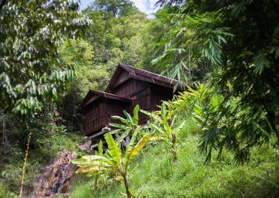 فيلا تقع في اعماق الغابات الاستوائية (19)