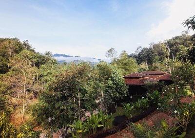 فيلا تقع في اعماق الغابات الاستوائية (22)