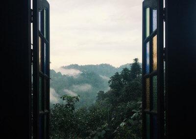 فيلا تقع في اعماق الغابات الاستوائية (27)