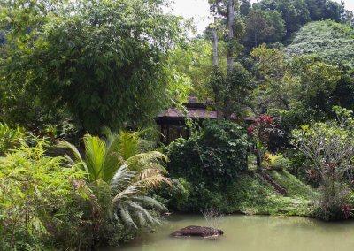 فيلا تقع في اعماق الغابات الاستوائية (28)