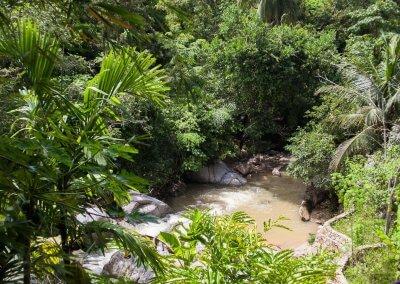 فيلا تقع في اعماق الغابات الاستوائية (30)