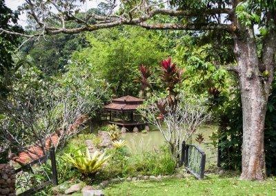 فيلا تقع في اعماق الغابات الاستوائية (9)