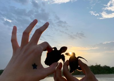 فيلا مع مسبح خاص على البلاج في باهانج (9)