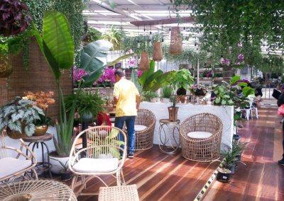 كافيه داخل مشتل وورد ونباتات (2)