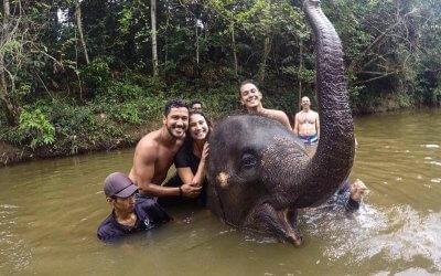 كوالا جاندا المركز الوطني لحماية الأفيال