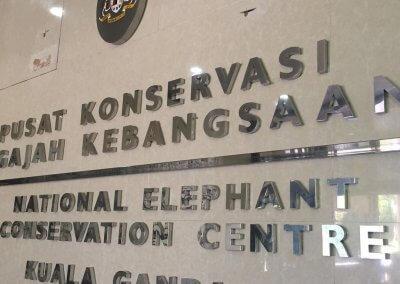 كوالا جاندا المركز الوطني لحماية الأفيال (11)