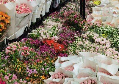 متجر لبيع الورود في كوالالمبور (1)