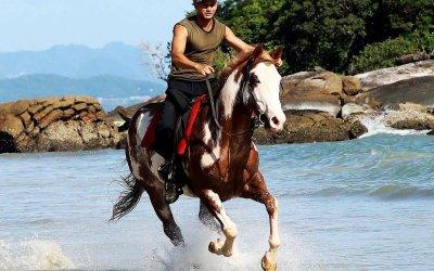 مغامرة ركوب الخيل في جزيرة لنكاوي
