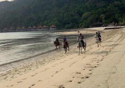 مغامرة ركوب الخيل في جزيرة لنكاوي (13)