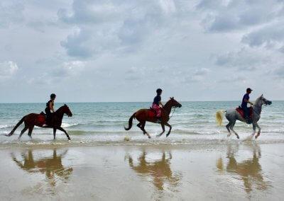 مغامرة ركوب الخيل في جزيرة لنكاوي (15)