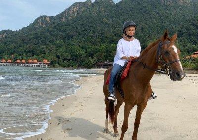 مغامرة ركوب الخيل في جزيرة لنكاوي (19)