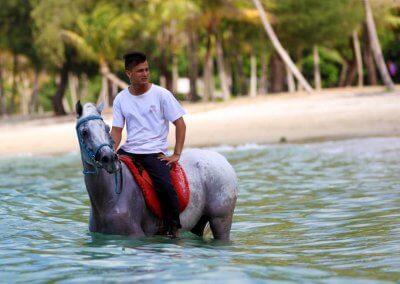 مغامرة ركوب الخيل في جزيرة لنكاوي (2)