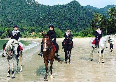 مغامرة ركوب الخيل في جزيرة لنكاوي (4)