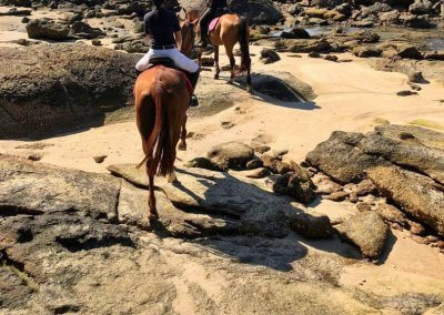 مغامرة ركوب الخيل في جزيرة لنكاوي (8)