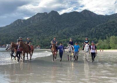 مغامرة ركوب الخيل في جزيرة لنكاوي (9)