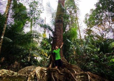 مكان غامض للاستكشاف في جزيرة بينانج (5)