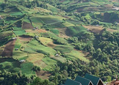 منزل الهوبيت المتواضع في كوتا كينابالو (16)