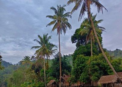 هل جربت العيش مع سكان ماليزيا الاصليين (3)