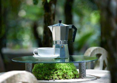 هل جربت تناول القهوة داخل غابة (1)