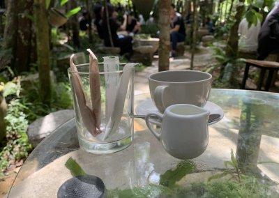 هل جربت تناول القهوة داخل غابة (11)