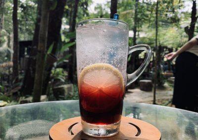 هل جربت تناول القهوة داخل غابة (12)