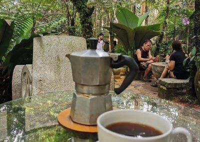 هل جربت تناول القهوة داخل غابة (8)