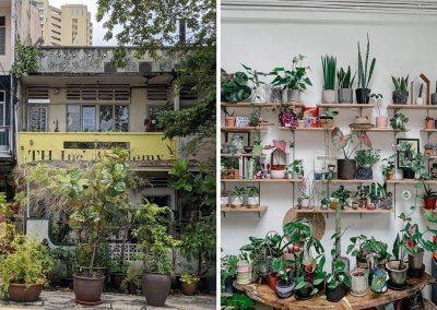 15. Planter Chin – plant-filled cafe & seasonal kombucha Address: 6A, Jalan Kemuja, 59000 Kuala Lumpur Opening hours: Tue – Sun 10AM-5PM (Closed on Mondays) Telephone: 019-616 5193