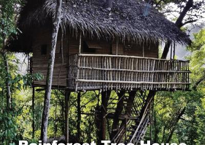 malaysia tree house (1)