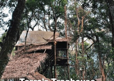 malaysia tree house (3)