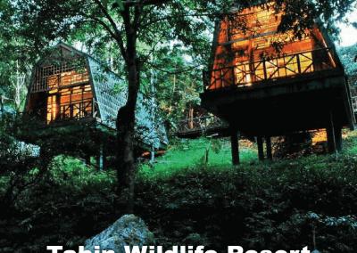 malaysia tree house (4)