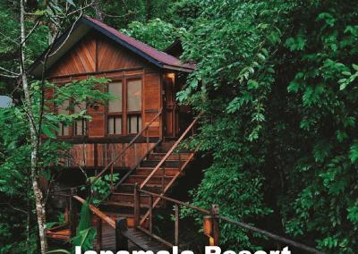 malaysia tree house (6)