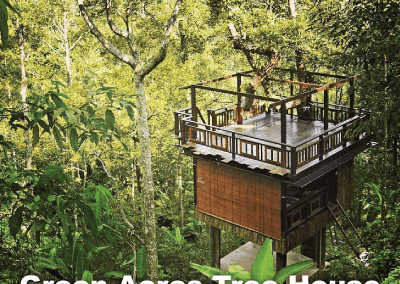 malaysia tree house (7)